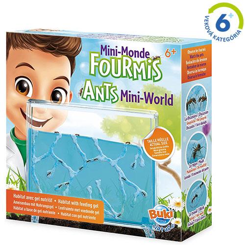 Buki - Akvárium pre mravce