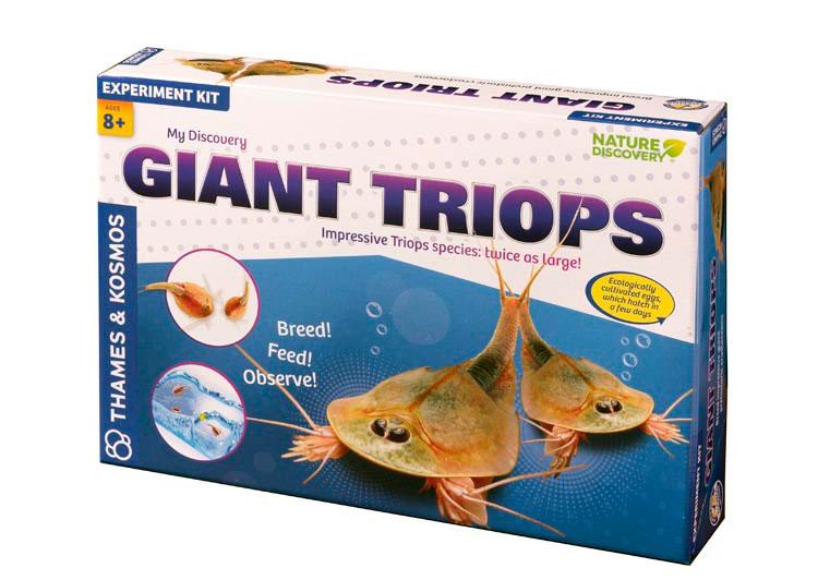Praveké akvárium  - štítovce