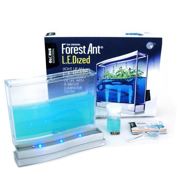Labák pre pozorovanie mravcov s LED osvetlením